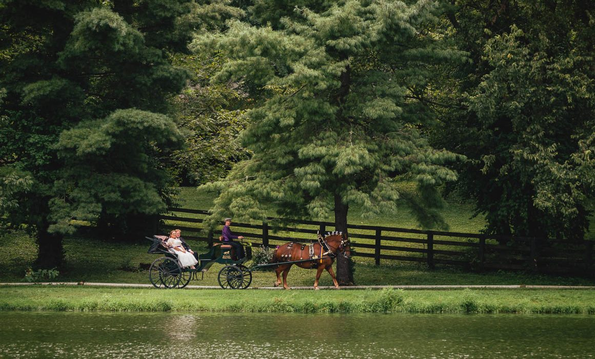 best kentucky horse park wedding photographer