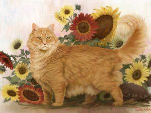fluffy orange cat with sunflowers